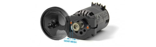 Spur Gear and Pinion Gear